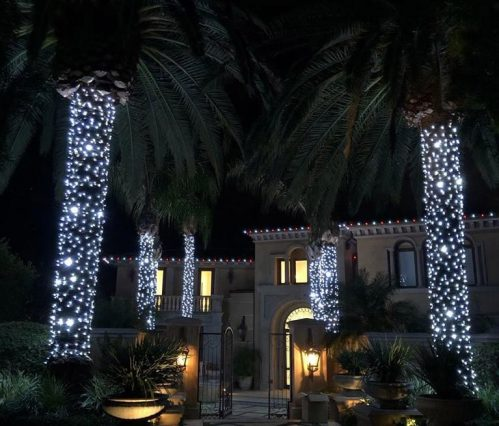 Chrsitmas-LED-lights-palms-wrapped-cool-white-red-white-roofline-3